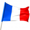 AGB DaWanda Frankreich: Rechtstexte der IT-Recht Kanzlei für den Vertrieb von Waren