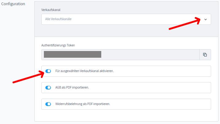 Ansicht API-Token für die AGB-Schnittstelleneinrichtung in Shopware 6