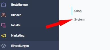 Auswahl Einstellungen - System in Shopware 6