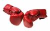 Crashtest– Was passiert wenn Marke und Domain kollidieren?