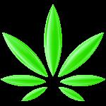 EuG: Cannabisblatt wegen Verstoß gegen öffentliche Ordnung nicht als Marke schützbar