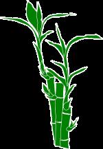 """Irreführende Werbung mit dem Attribut """"Bambus"""" für Textilien: Abmahnungen im Umlauf"""