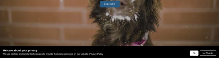 Shopify-CCT 3
