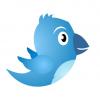 Social Media Richtlinie: Zielführend zwitschern - Chancen, Risiken und Regelungsmöglichkeiten (Teil 1)