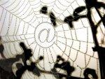 Strafrechtliche Aspekte beim Zugriff auf fremde WLAN-Netzwerke