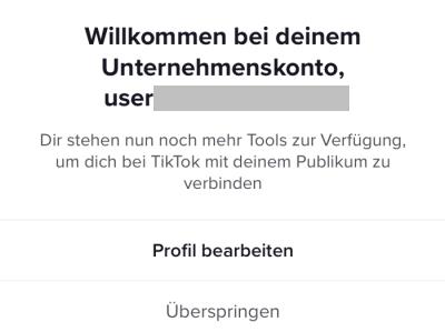 TikTok - Statusansicht nach Anlage des Unternehmenskontos