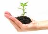 Umweltaspekte: Im Rahmen von IT-Beschaffungen (Green IT)