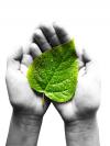 Umweltfreundliche Flamme? Irreführende Werbeaussagen mit Bezügen zum Umwelt- und Klimaschutz